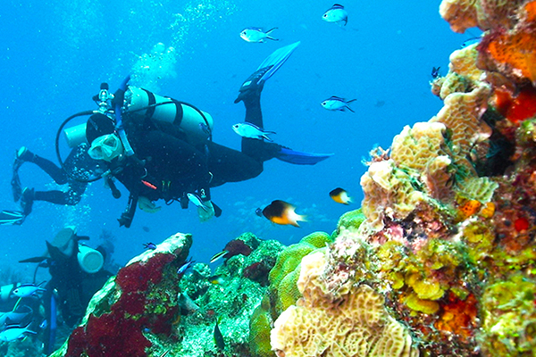 cozumel-introductory-to-scuba-diving